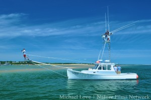 Cape Cod Shark Hunters Ezyduzit